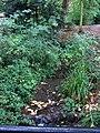 The Pent Stream in a park, Folkestone - geograph.org.uk - 1544808.jpg