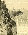 The Pine-tree coast (1891) (14777261494).jpg