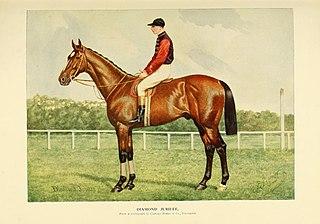 Diamond Jubilee (horse) British-bred Thoroughbred racehorse