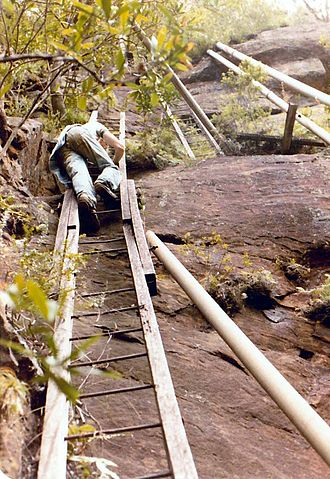 Peat Island - This series of five ladders provided access to the dam in the gully above the cliffs. Photographed in 1983.