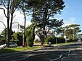 The turn-off from the Bangor Road to the Breeze Hill estate - geograph.org.uk - 551282.jpg