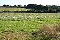 Thelbridge, farmland near Foxdon - geograph.org.uk - 235003.jpg