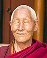 Tibetan Buddhist monk face detail, from- Visitors to Kalachakra empowerment, Ladakh, 2014 pose for a photograph with a Buddhist monk (cropped).jpg