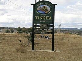 Tingha