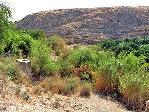 Wadi al-Far'a (river) - Image: Tirza 1