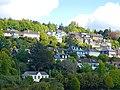 Tivoli, Cork, Ireland - panoramio.jpg