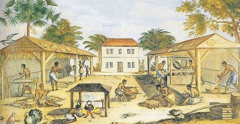 Tobacco cultivation (Virginia, ca. 1670).jpg