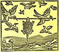 Tortoise and Birds (North).JPG