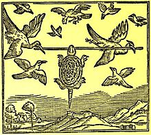 The Tortoise and the Birds - Wikipedia