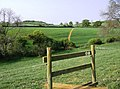 Towards Yarn Hill Farm - geograph.org.uk - 449000.jpg