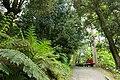 Trebah Garden - Cornwall, England - DSC01342.jpg