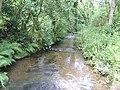 Trebant Water - downstream - geograph.org.uk - 492571.jpg