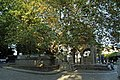 Tree of Hippocrates 1.jpg