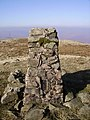 Trig Pillar, Grayrigg Forest - geograph.org.uk - 694277.jpg