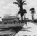 Tropenmuseum Royal Tropical Institute Objectnumber 20007183 De woning van de werktuigkundige op d.jpg