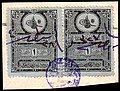 Turkey 1891 Revenue Sul 5179 pair.jpg