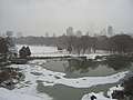 Turtle Pond and Great Lawn, Central Park, New York City.jpg