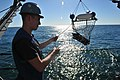 U.S. Navy Mineman Seaman Brett Walker, assigned to MCM Crew Dominant and deployed aboard the mine countermeasures ship USS Gladiator (MCM 11), helps recover a retrieval net containing a SeaFox portable mine 130117-N-CG436-138.jpg