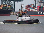 UNION HAWK - IMO 9406439 - Callsign ORPQ, Port of Antwerp, pic1.JPG