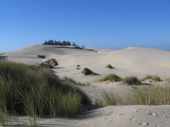 The Oregon Dunes near Florence, Oregon, served as an inspiration for the Dune saga. USA Oregon Dunes.jpg