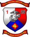 USMC - 1ST BN-25TH MAR.png