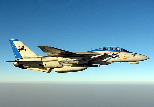 US Navy 051010-N-5088T-001 A specially painted F-14D Tomcat, assigned to the Blacklions of Fighter Squadron Two One Three (VF-213), conducts a mission over the Persian Gulf