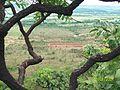 Unai MG Brasil - Cerrado mineiro - panoramio.jpg