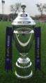 Uzbekistan PFL Cup.png