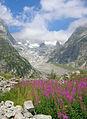 Val Ferret DSCN8807 dett.jpg