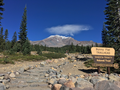 View from Bunny Flat Trailhead, Mount Shasta, California.png