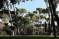 Villa Borghese 18.jpg