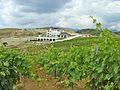Villa melnik winery1.jpg