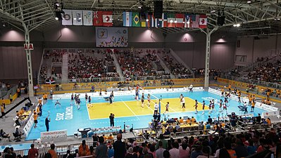 Volleyball 2015 Pan Am Games.jpg