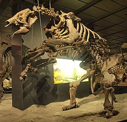 WLA hmns Giant ground sloth 2.jpg