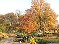 W jesiennym Parku II..JPG
