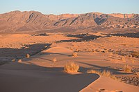 Wadi Araba Dunes at Sunset.jpg