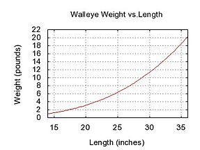 Walleye sander vitreus details encyclopedia of life for Fish weight by length chart