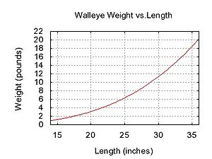 Walleye - Weight and length of walleyes