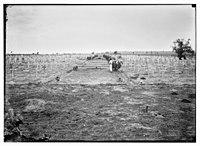 War cemetery in Palestine (probably Gaza) LOC matpc.08239.jpg
