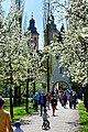 Weg zum Schloss Bad Mergentheim im Frühling.jpg