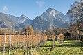 Weinbau in Zizers.jpg