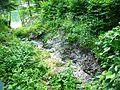 Whaleback Shell Midden gully - 20070722 07986.JPG