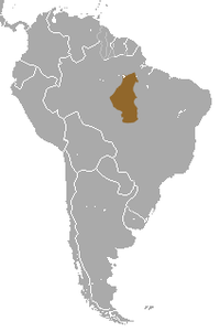 White-cheeked Spider Monkey area.png