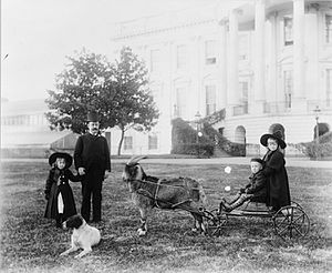 Russell Benjamin Harrison - Major Russell Harrison with children, brother and sister on a goat cart at the White House, between 1889 and 1893