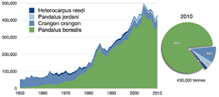 Cattura dei gamberetti, 1950-2010