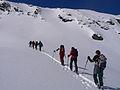 Wildkar 2614 2007-03-11.JPG