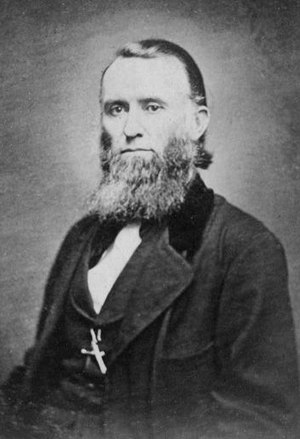 McCormick family - William Sanderson McCormick (1815–1865)