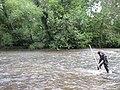 Working a kick net (6185341038).jpg