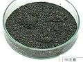 Yayoi carbonized rice of Yoshinogari Site.jpg