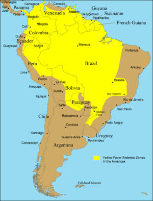 Mosquito-borne disease - Endemic range of yellow fever in South America (2005)